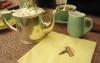Английская чайная Babington's English Tea Room (Рим, Италия)