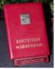 День Конституции Российской Федерации (Санкт-Петербург)