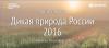 Фотоконкурс National Geographic: «Дикая природа России 2016»