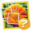 "Игра ""1 фото 1 слово: мозаика"" для Android"