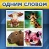"""Игра """"Одним словом"""" Вконтакте"""