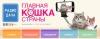 Конкурс радио Дача Главная кошка страны