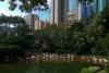 Коулун парк в Гонконге (Китай)