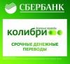 """Система денежных переводов """"Колибри"""" от Сбербанка"""