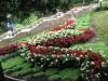 Патриарший сад (Владимир, Россия)