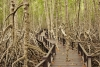 Природный парк Pranburi Forest Park (Таиланд, Хуа Хин)