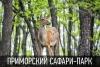 """Приморский Сафари Парк """"Парк Тигров"""" (Россия, Находка, п. Шкотово)"""