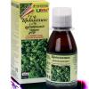 Растительный сироп Ulife Бронхоликс