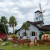 Ферма Hua Hin Farm (Таиланд, Хуа Хин)
