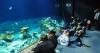 Океанариум Tropen-Aquarium в зоопарке Хагенбек (Германия, Гамбург)