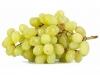 Виноград Киш-Миш белый
