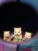 """Набор Village Story """"Семья белых мишек"""" VS_109"""