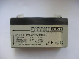 "Аккумулятор Bossman Professional ""Profi"" Sealed Lead-Acid Rechargeable Battery"