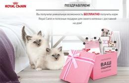 """Акция """"Подарок для котенка"""" от Royal Canin"""