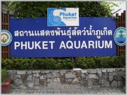 Аквариум на Пхукете (Таиланд)