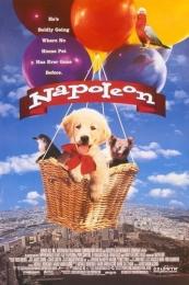 """Фильм """"Наполеон"""" (1995)"""
