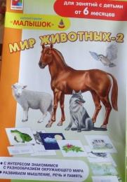 """Игра для занятий родителей и педагогов с детьми от 6 месяцев и старше Радуга """"Мир животных - 2"""""""