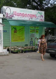 """Садовый магазин """"Чиполлино"""" (Тольятти, ул. Мира, д. 60б)"""