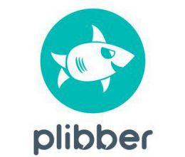 Сервис рекламы в социальных сетях Plibber.ru