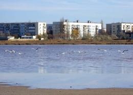 Поселок Мирный (Крым)
