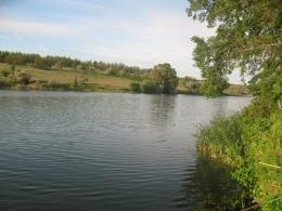 Рыбалка на пруду Черноморец (Россия, Саратовская область)