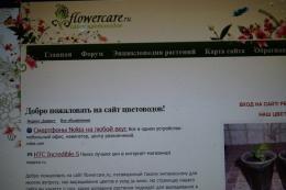 Сайт Flowercare.ru