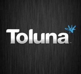 Сайт toluna.com