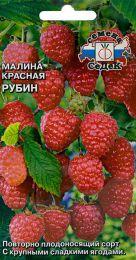 """Семена ремонтантной красной малины """"Рубин"""" СеДеК."""