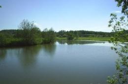 Рыбалка на реке Веля (Россия, Московская область)