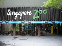 Зоопарк Singapore Zoo в Сингапуре