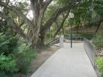 Коулун парк в Гонконге