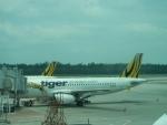Самолет авиакомпании Tiger Airways