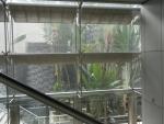 Аэропорт Чанги в Сингапуре - в аэропорту очень много зелени