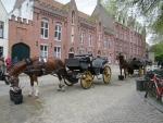 Лошадей в Брюгге очень много