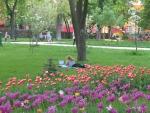 отдых в центре города)