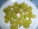 Мой любимый виноград