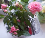 Розовая Кордана