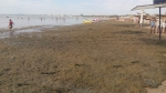 Пляж в обычный день
