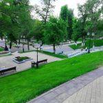 Струковский парк - зеленая зона