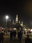 Люди идут к площади у Ратуши Вены встречать Новый год