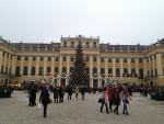 Большая елка у Дворца Шенбрунн в Вене