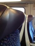 Удобные вогнутые подголовники поезда OBB