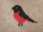 Мужская кофта ASOS Bird Design Jumper - принт