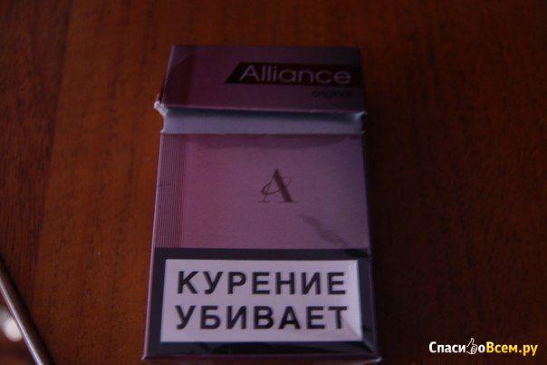 Сигареты Alliance Original фото