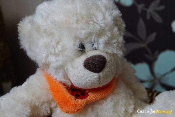 Мягкая игрушка Plush Apple медведь с шарфом 24 см белый фото