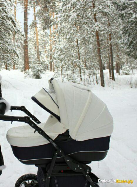 Детская коляска Adamex Nitro фото