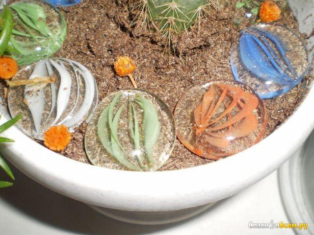"""Декоративные стеклянные камешки для клумб и цветочных горшков """"Бэст Прайс"""" фото"""