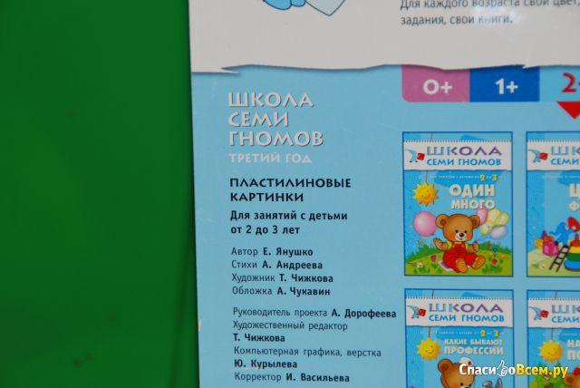 """Развивающий альбом Школа Семи Гномов """"Пластилиновые картинки"""" от 2 до 3 лет"""