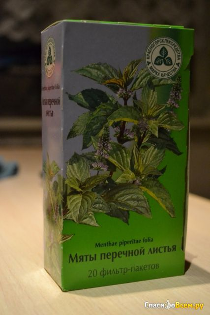 """Мяты перечной листья """"Красногорсклексредства"""" фильтр-пакетики"""