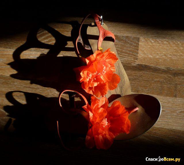 Сеть обувных магазинов Oscar J. Nero фото